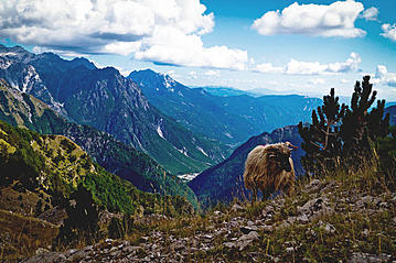 Small 20150818 hell gettyimages valbona tal 1087010204 jeroen mikkers online 800x600